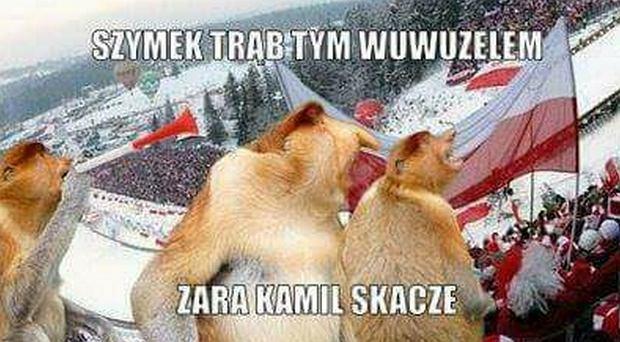 Zdjęcie numer 6 w galerii - Skoki narciarskie. PŚ w Willingen. Memy po zwycięstwie Polaków
