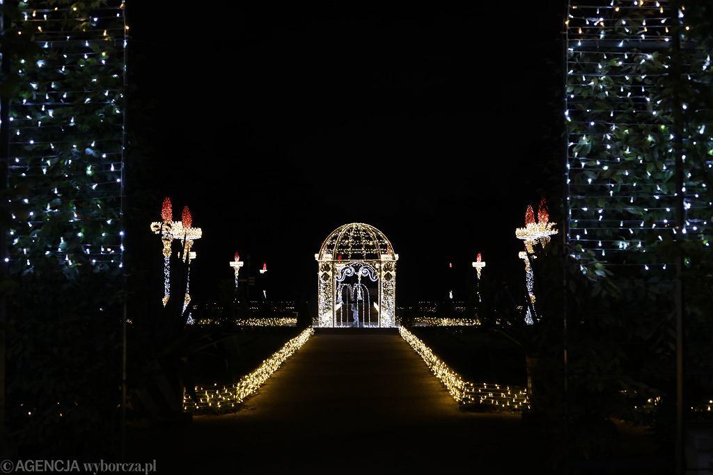 Ferie 2021. Królewski Ogród Świateł powinien być obowiązkowym punktem zimowego spaceru po Warszawie