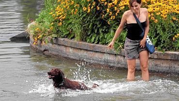Teraz kąpiel psów na Polu Mokotowskim jest nielegalna
