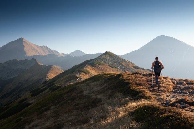 Ornak/ Fot. Shutterstock