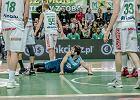 Stelmet BC Zielona Góra - Polski Cukier Toruń, Polska Liga Koszykówki [GDZIE OBEJRZEĆ, RELACJA]