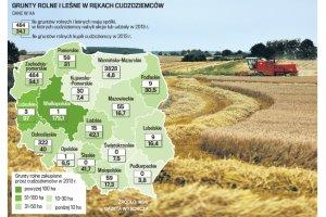 Słupy kupują polską ziemię dla zagranicznych koncernów. PiS grzmi