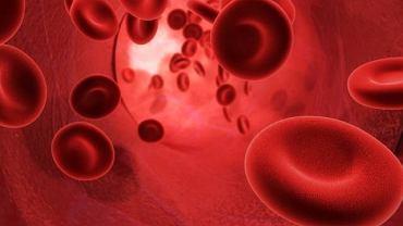 Megakariocytopenia to bardzo rzadki rodzaj skazy krwotocznej