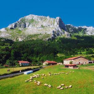Turystyka kulinarna rozwija się w Europie z roku na rok.