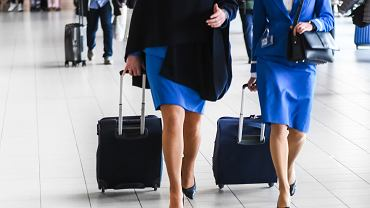 Stewardessy, zdjęcie ilustracyjne