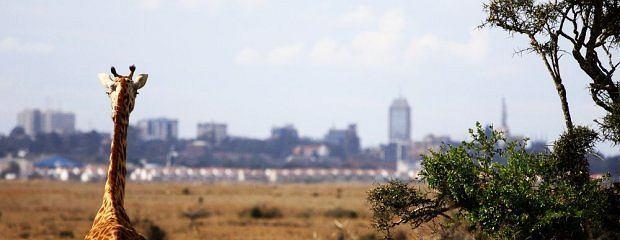 Nairobi - Kenia