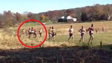 Jeleń zderza się z zawodnikiem podczas biegu przełajowego w Pensylwanii