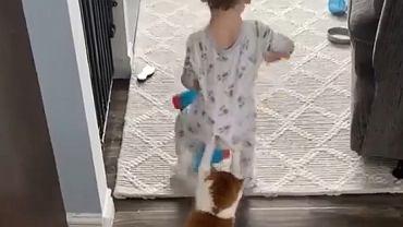 Dobra zabawa małego chłopca i ukochanego kota