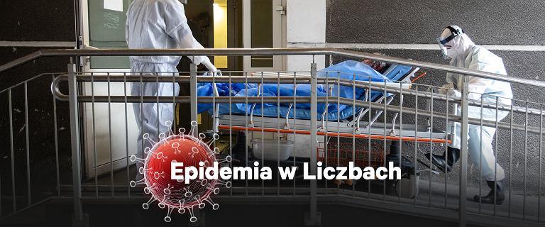 Odsetek pozytywnych wyników pokazuje, że epidemia jest poza kontrolą