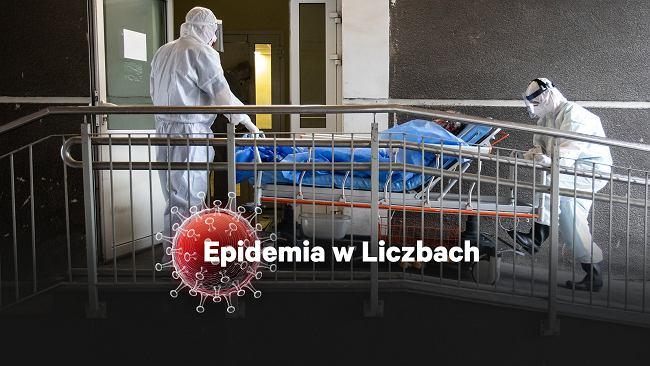 Epidemia jest już poza naszą kontrolą. Dziwne dane z Lubelszczyzny - prawdopodobieństwo 0,00000032 proc.
