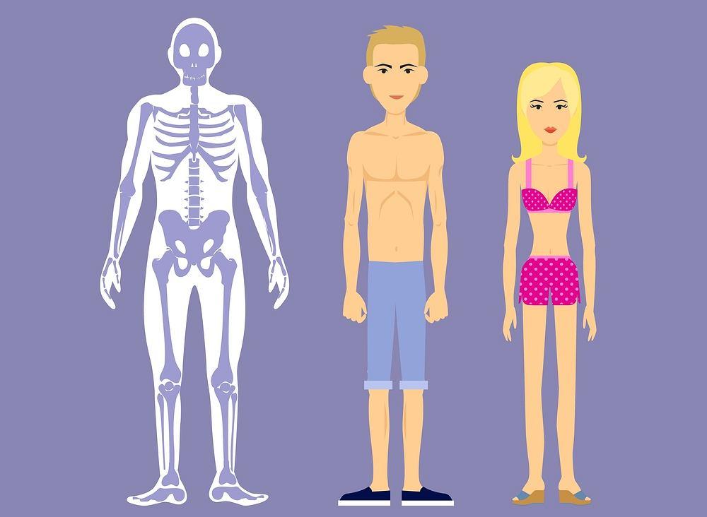 Ektomorfik to osoba szczupła, z mocno zarysowanymi kośćmi, a także o stosunkowo wąskich ramionach