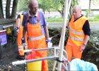 Miasto zatrudnia bezdomnych alkoholików: Posprzątasz ulice, dostaniesz piwo