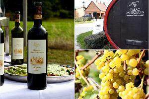 Winogrona w kieliszku i na talerzu. Jesień w winnicy Mierzęcin