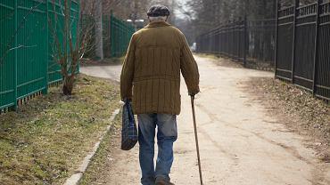 14. emerytura - ile netto? Kiedy seniorzy dostaną wypłatę czternastki