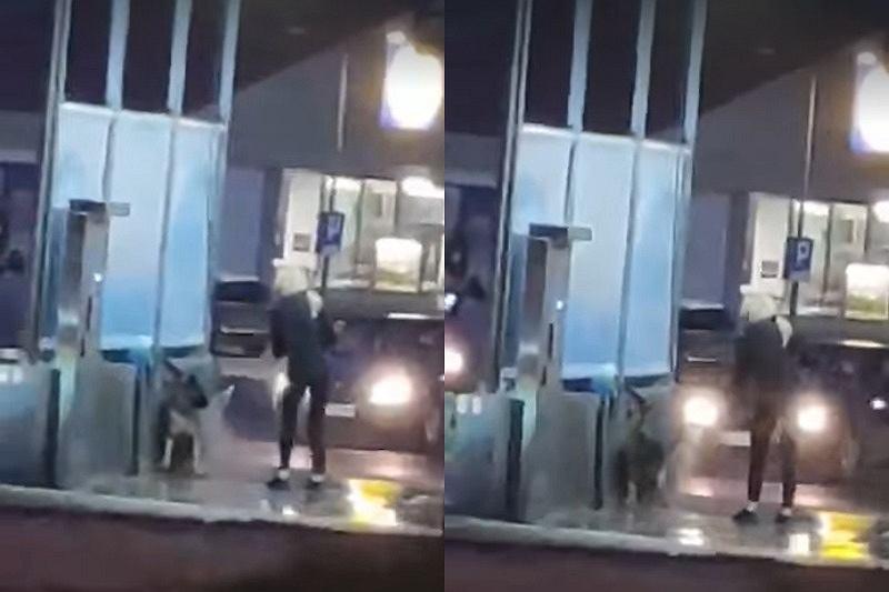 Kobieta myła psa myjką Karcher na myjni samochodowej w Szczecinie