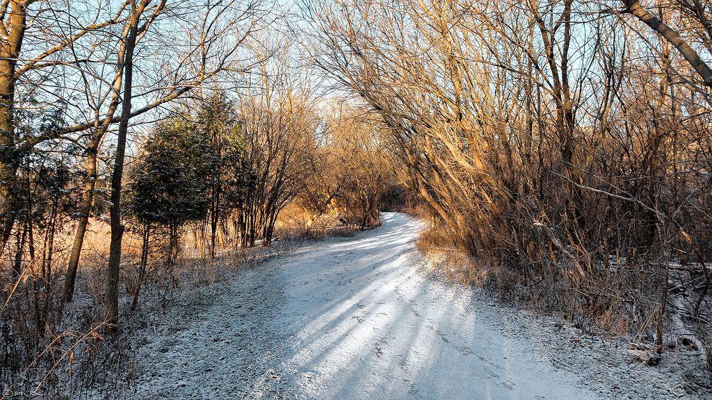 Pierwszy śnieg i mróz już w przyszłym tygodniu