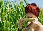 Od paszy do kulinarnego przeboju - kariera kukurydzy