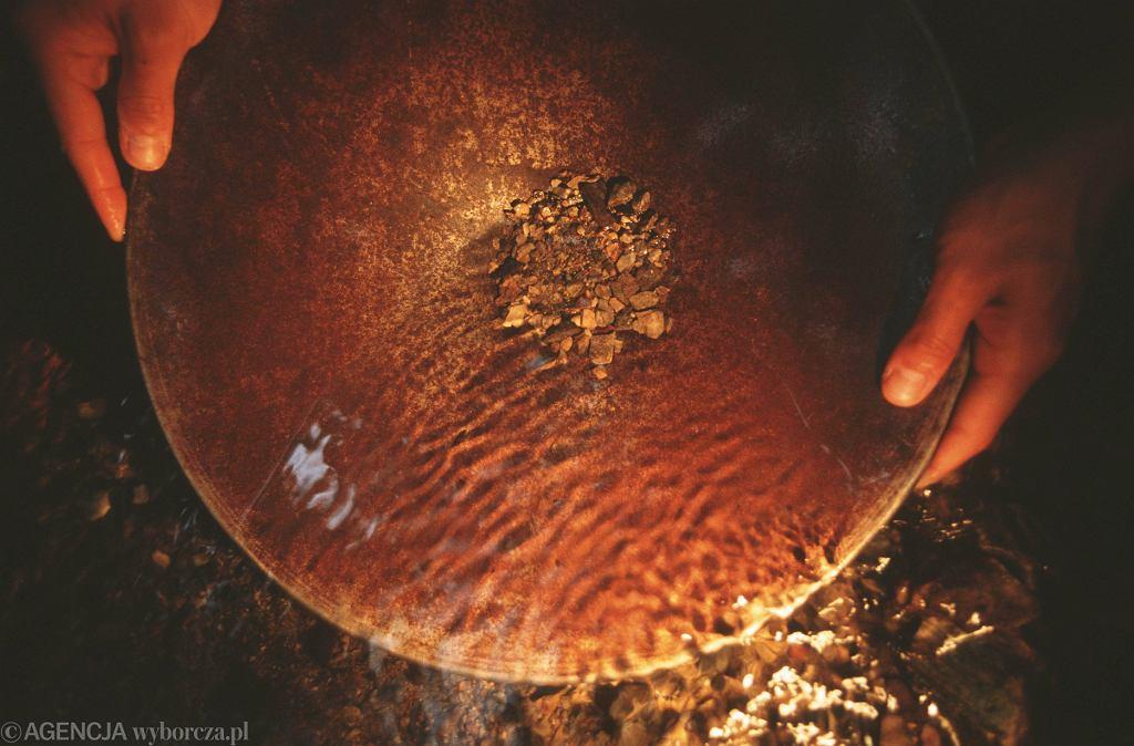 Pod wsią Mikołajowice na Dolnym Śląsku odkryto żyłę złota