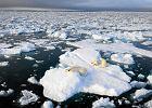 Rosja chce rozszerzyć swoje granice w Arktyce