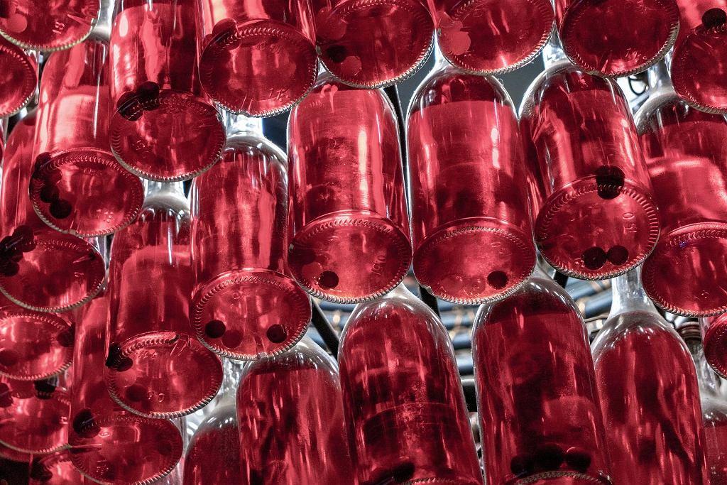 Nalewka wiśniowa - domowy przepis na leczniczy trunek na wódce i z miodem