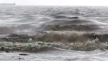 Morze wyrzuca śmieci
