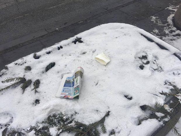 W kwietnikach śmieci. Warszawa czeka na wiosenne porządki