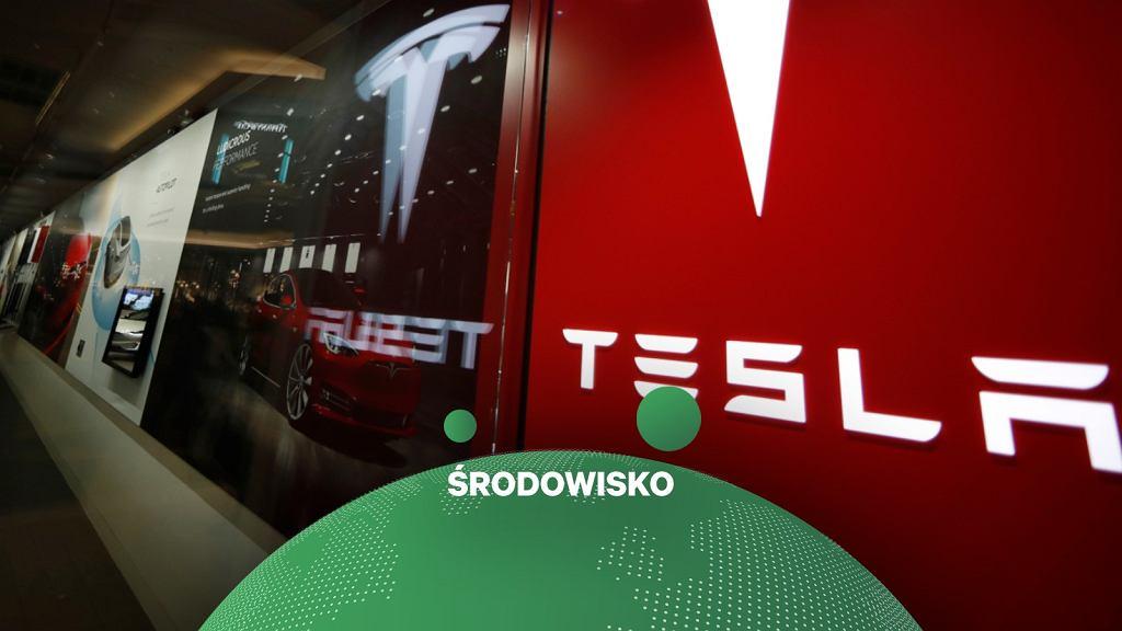 Tesla i gigafabryka w Niemczech