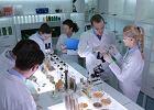 Polscy naukowcy wydrukowali bioniczną trzustkę. To pierwszy przypadek na świecie
