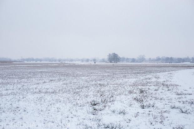 Zdjęcie numer 39 w galerii - Zima w Krakowie - śnieg przykrył ulice, domy, parki [GALERIA]