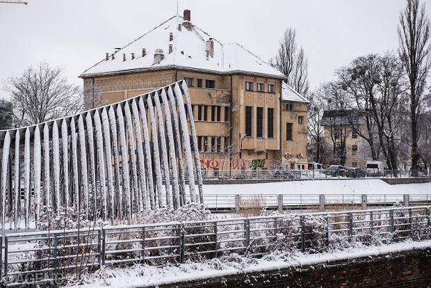 Zdjęcie numer 40 w galerii - Wrocław pod śniegiem. Zobacz zimowe zdjęcia z centrum miasta [FOTO]
