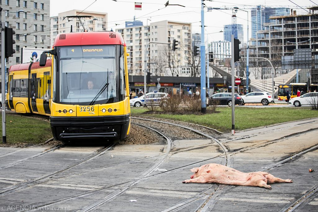 Manifestacja rolników w Warszawie. AGROunia zablokuje plac Zawiszy i rondo Dmowskiego