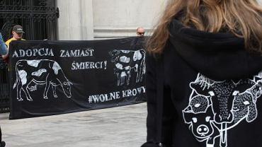 Protest przed resortem rolnictwa przeciwko pomysłowi uboju stada dzikich krów z miejscowości Deszczna
