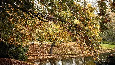 Pogoda. Synoptycy zapowiadają bardzo ciepłą jesień