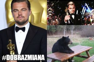 Zdające się nie mieć końca oczekiwanie Leonardo DiCaprio na Oscara, przez lata było wdzięcznym tematem internetowych żartów. w 2016 wreszcie nadszedł TEN moment. Koniec memów? Nie, początek nowych! Zobaczcie te najlepsze.