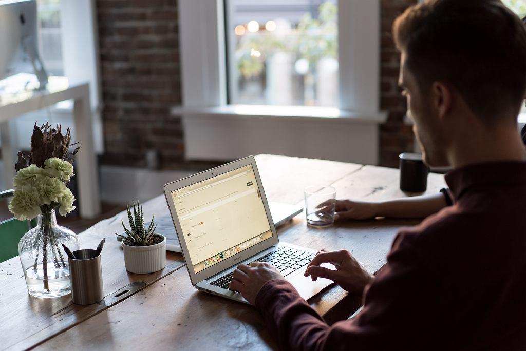 Informatyk z własną firmą może płacić tylko 5 proc. podatku dochodowego