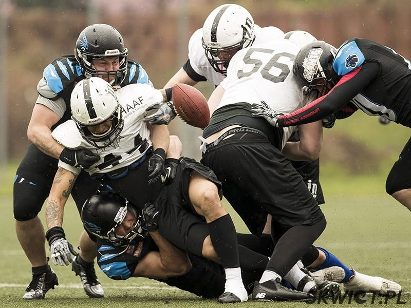 Sparing Panthers Wrocław z Inglostadt Dukes