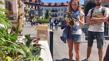 Dzięki mobilnej aplikacji Plantswapp można wymienić się roślinami ze swoimi sąsiadami
