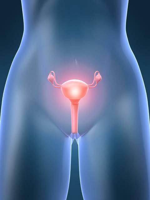 U kobiet z PCOS zaburzona jest gospodarka hormonalna. Choć w ich jajnikach rosną pęcherzyki, nie dochodzi do owulacji, nie powstaje więc ciałko żółte i nie podnosi się ilość progesteronu we krwi