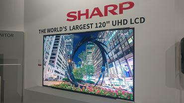Największy na świecie telewizor UHD LCD (120 cali)