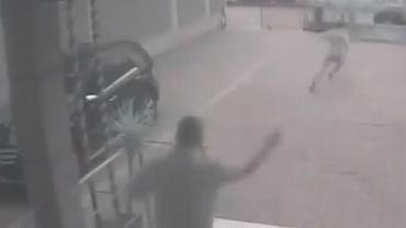 Usłyszał wyrok i zaczął uciekać