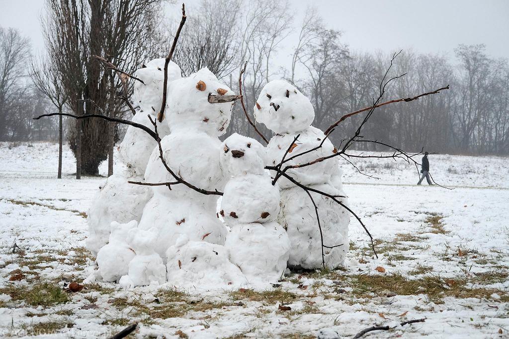 Symbol zimy