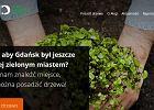 W Gdańsku można łatwo posadzić drzewo smartfonem. Partia Zieloni apeluje: Posadź drzewo na złość Szyszce