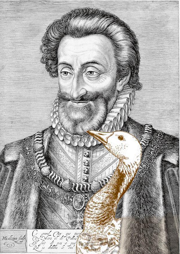 Henryk IV król Nawarry i Francji kochał gęsinę i czosnek