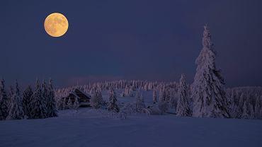 Śnieżny Księżyc. Pełnia Księżyca w lutym będzie jedną z największych w 2020 roku. Czy to Superksiężyc?