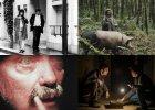 15 filmów na 15 edycję festiwalu Nowe Horyzonty. Tego nie możesz przegapić
