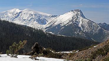 Tatrzański Park Narodowy, Hala Gąsienicowa (zdjęcie ilustracyjne)