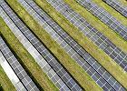 Zielona energia jeszcze nigdy nie była tak tania. To ostatni dzwonek dla polskich spółek i rządu