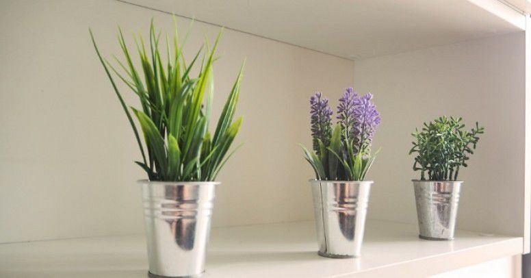 Sztuczne kwiaty w wiaderkach prezentują się bardzo nowocześnie