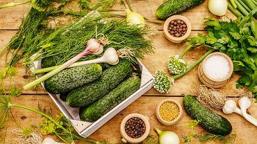 Kiszenie ogórków i kapusty: kiedy kisić warzywa? Zdjęcie ilustracyjne