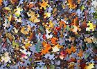 Puzzle - idealna rozrywka na zimowe wieczory! Mamy propozycje dla całej rodziny